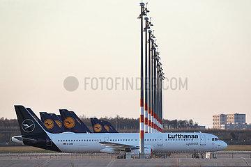 Schoenefeld  Deutschland  Flugzeuge der Lufthansa stehen auf einem Vorfeld des Flughafen Berlin-Brandenburg International