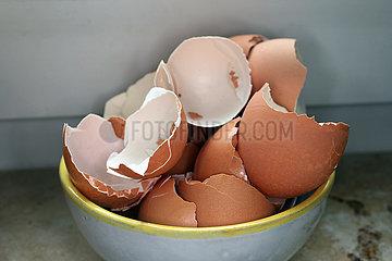 Berlin  Deutschland  Eierschalen in einer Schuessel