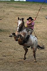 Jesus Maria  Reiter versucht sich auf einem steigenden Pferd zu halten