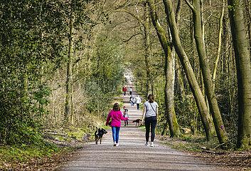 Menschen spazieren im Duisburger Stadtwald  Duisburg  Ruhrgebiet  Nordrhein-Westfalen  Deutschland