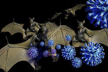CGI Visualisierung: Coronavirus Mensch Fledermaus