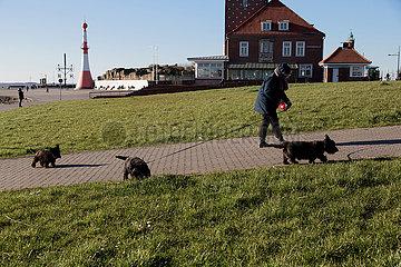 Deutschland  Bremerhaven - Spaziergaenger mit Scottish Terriern an der Muendung der Weser zur Nordsee