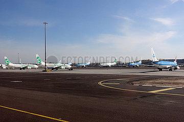 Amsterdam  Niederlande  Auswirkungen der Coronapandemie: Flugzeuge der KLM und Transavia in Parkposition am Flughafen Schiphol