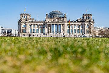 Berlin waehrend der Ausgangsbeschraenkung: Fast menschenleere Wiese vor dem Reichstagsgebaeude