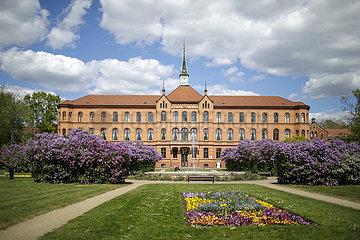 Koenigin Elisabeth Herzberge Krankenhaus