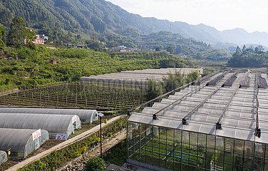 CHINA-SICHUAN-Gongxian-moderne Landwirtschaft (CN)