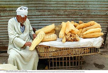 EGYPTE HOMME EGYPT MAN