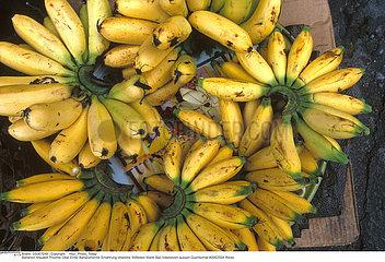 FRUIT BANANE BANANA