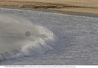 PLAGE!BEACH
