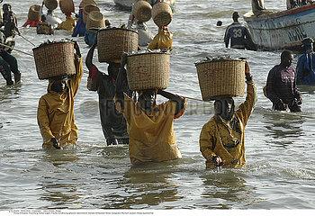 AFRIQUE ACTIVITE!!AN AFRICAN SCENE
