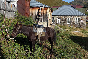 Ushguli  Georgien  Pferd ist gesattelt vor einem Haus an einem Baum angebunden