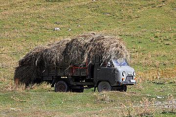 Ushguli  Georgien  Lastwagen ist voll mit Heu beladen