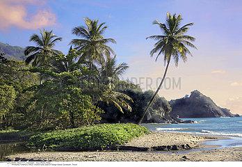 TRINIDAD TOBAGO  WEST INDIES