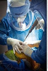 Reportage_206 / Orthopädische Operation  ORTHOPEDIC SURGERY