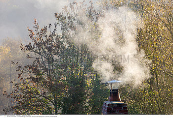 Smoke raising from a chimney in winter forest background