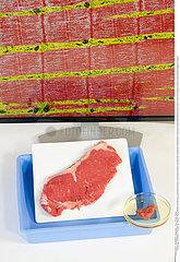 Steak in a lab