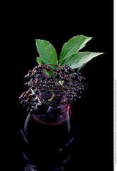 Elderberry juice. jar of homemade elderberry juice and fresh fruits on black background