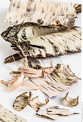 Birch barks.