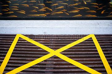 Singapur  Republik Singapur  Safe Distancing Massnahmen durch abgeklebte Flaechen auf Sitzbaenken