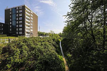 Gewaesser Renaturierung  Hellbach  Recklinghausen  Ruhrgebiet  Nordrhein-Westfalen  Deutschland