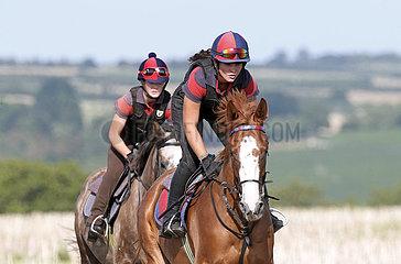 Gestuet Westerberg  Maedchen reiten auf ihren Pferden ueber ein Stoppelfeld