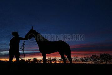Neuenhagen  Silhouette: Frau holt ihr Pferd bei Morgendaemmerung von einer Koppel