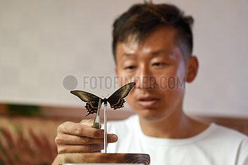 (FOCUS) CHINA-XINJIANG-BUTTERFLY-BUSINESS-ENTREPRENEUR (CN)