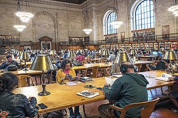New York Publik Library
