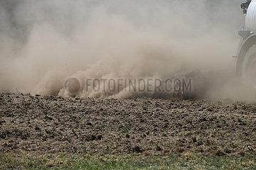 Doebrichau  Deutschland  Harvester in einem Kiefernwald entastet einen Baumstamm