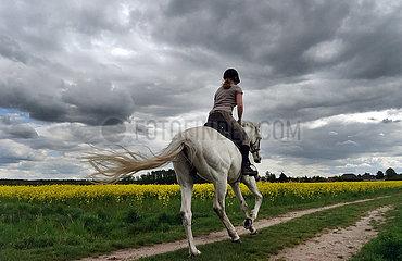 Altlandsberg  Frau macht unter einem dramatischen Wolkenhimmel einen Ausritt neben einem Rapsfeld