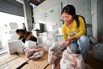 CHINA-GUIZHOU-tianzhu-COVID-19-Hühnerzucht (CN) CHINA-GUIZHOU-tianzhu-COVID-19-Hühnerzucht (CN)