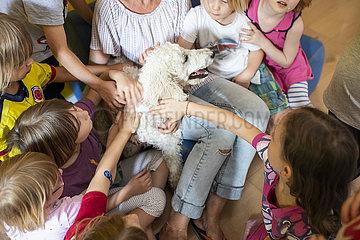 Kinder streicheln einen Hund im Kindergarten