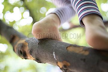 Mädchen klettert auf Baum in Kindergarten