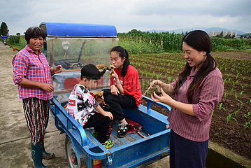 CHINA-ZHEJIANG-RUIAN-LANDLEBEN-CHOREOGRAPHIE (CN)