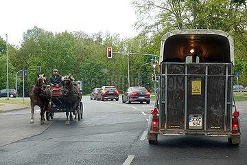 Hoppegarten  Deutschland  Pferdegespann faehrt auf einer Strasse an einem Pferdeanhaenger vorbei