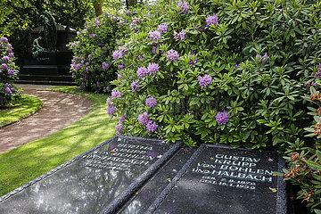 Familienfriedhof der Industriellenfamilie Krupp  Friedhof Bredeney  Essen  Ruhrgebiet  Nordrhein-Westfalen  Deutschland