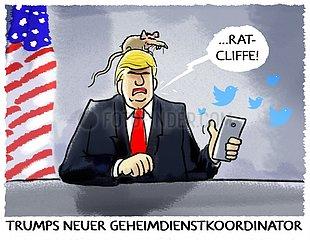 Trumps neuer Geheimdienstkoordinator