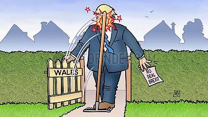 Nachwahl Wales
