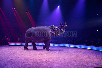 Circus Krone celebrates Premiere of Second Winter Season