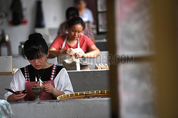 (AmazingAnhui)CHINA-ANHUI-CULTURE-INK BRUSH (CN)