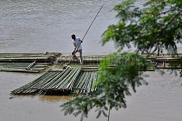 INDIEN-Agartala-Bambus-Stangen