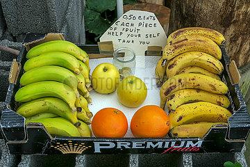 Länderküche Portugal: Obst als Wegzehrung