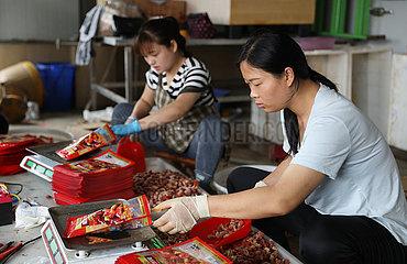 CHINA-JIANGSU-LIANYUNGANG-LIVE STREAMING-SALES (CN)