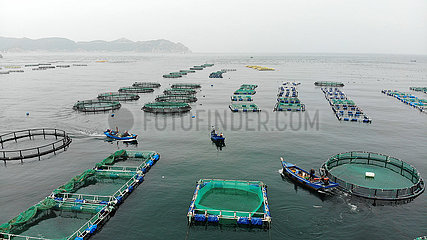 CHINA-SHANDONG-YANTAI-Aquafarm-Marine Ecology (CN)