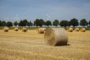 Strohballen liegen nach Getreideernte auf Stoppelfeld  Linnich  Nordrhein-Westfalen  Deutschland  Europa