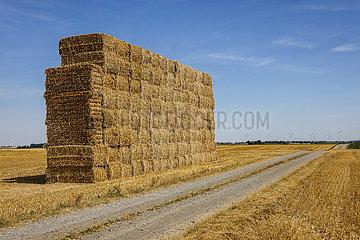 Strohballen gestapelt nach Getreideernte auf Stoppelfeld  Linnich  Nordrhein-Westfalen  Deutschland  Europa