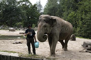 SLOWENIEN-LJUBLJANA-ZOO-WORLD ELEPHANT DAY