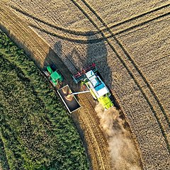 Getreideernte-Drohnenaufnahme Kaiser-Wilhelm-Koog