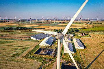 Agrarlandschaft-Drohnenaufnahme Kaiser-Wilhelm-Koog