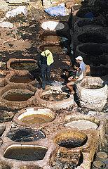 Fes  Marokko  Arbeiter in einer traditionellen Gerberei mit ihren typischen Becken